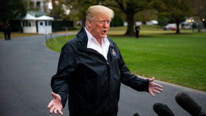Donald Trump Obese