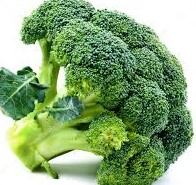 eating raw broccoli