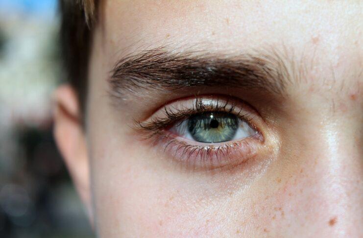 Eyebrows Grow Back